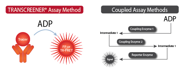 Transcreener Assay Method (ADP) vs Coupling Assay Methods