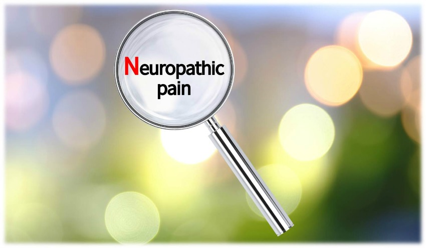 EZH2 Methyltransferase Spotlight on Neuropathic Pain