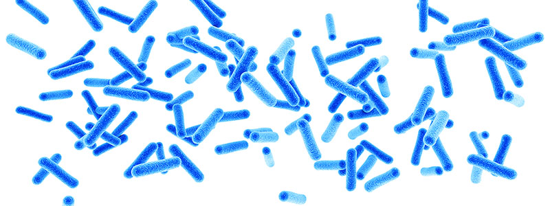 NOD2 Signals to RIPK2 Based on Bacterial Presence