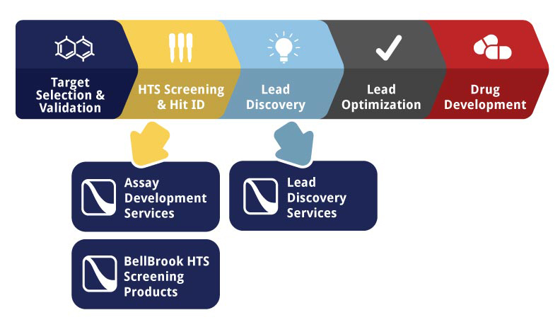 Lead Discovery Services Graphic