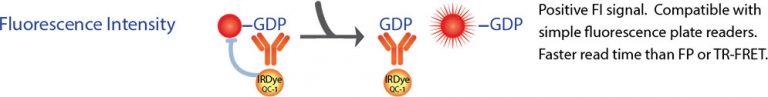 FI GDP GAP Assay