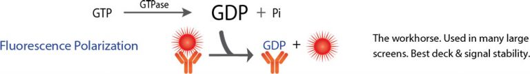 FP GDP GAP Assay