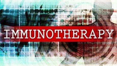 HSP90 Inhibitor Immunotherapy