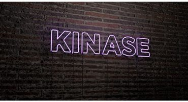 What is a kinase assay