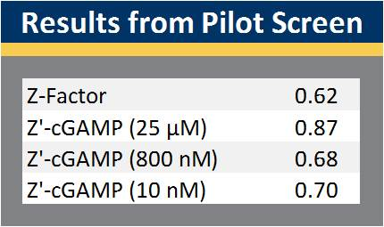 Results from cGAS Pilot Screen