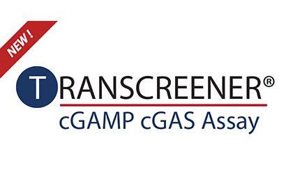 New Transcreener cGAS Assay