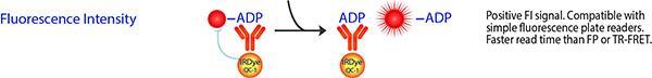 FI ADP ATPase Assay