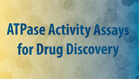 atpase activity assays for drug discovery