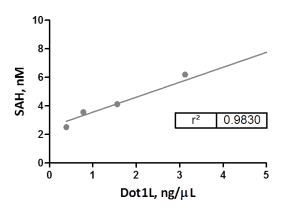 DOT1L Titration Under Initial Velocity Conditions