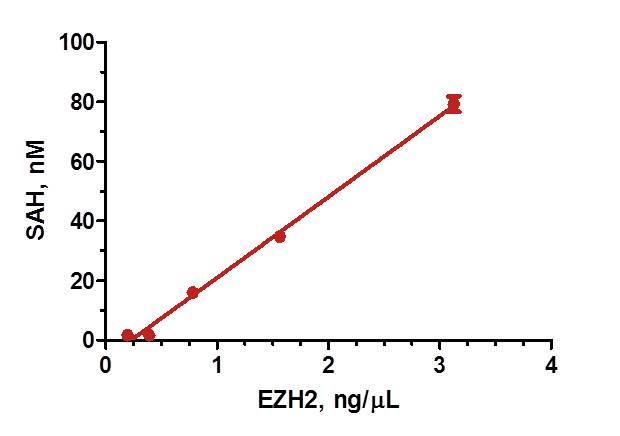 EZH2 Under Initial Enzyme Velocity