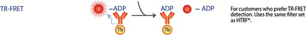 TR-FRET ADP ATPase Assay
