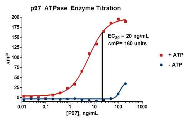 p97 ATPase Enzyme Titration