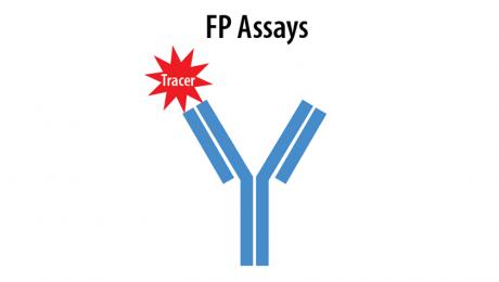 FP Assays