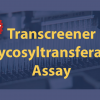 Transcreener Glycosyltransferase Assay Blog