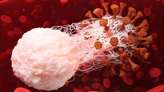 Innate Immunity Targets