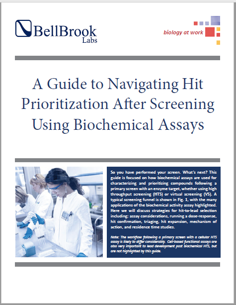 A Guide to Navigating Hit Prioritization After Screening Using Biochemical Assays