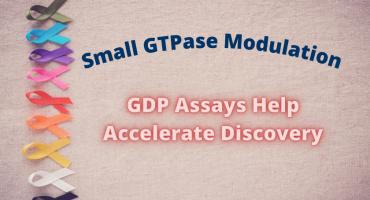 Small GTPase Modulation