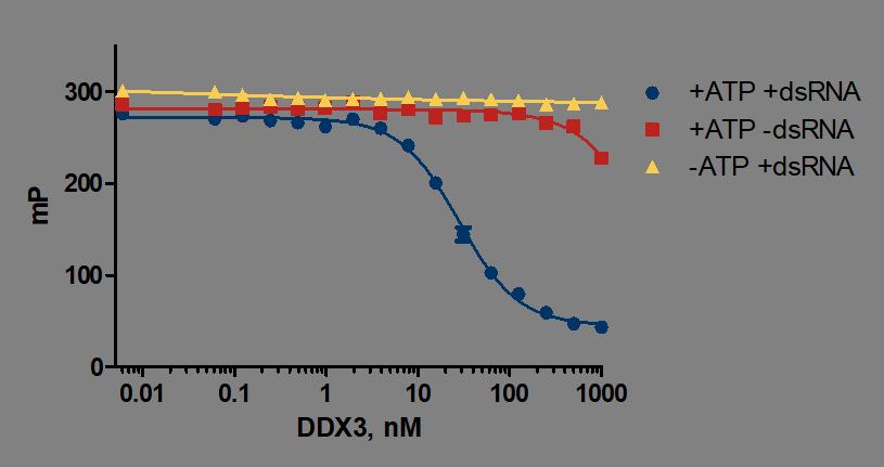 DDX3 Enzyme Titration Raw Data